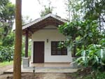 A cottage in Mudumalai